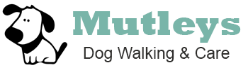 Dog Walking Hastings – Mutleys Dog Walking and Day Care – Hastings, East Sussex